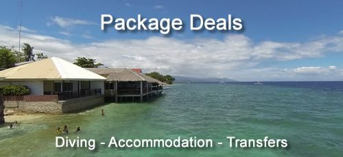 Moalboal Package Deals for diving, accommodation and transfers