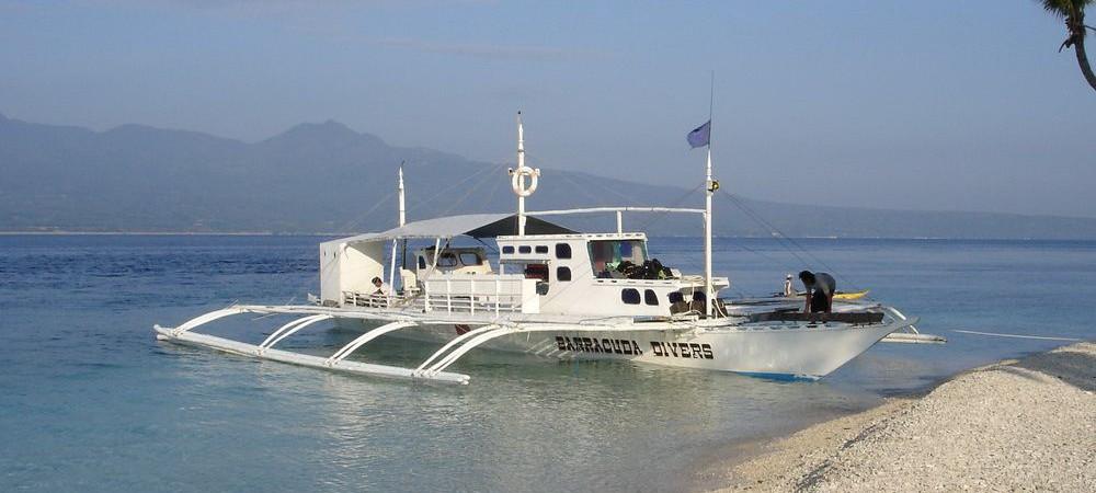 Dive Safari to Apo Island and Sumilon Island
