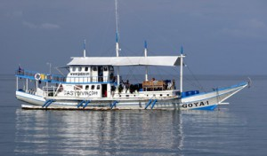 Dive Safari Boat Goya