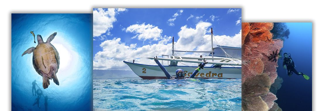 Cebu, Philippines: Have fun scuba diving with Savedra Dive Center in Moalboal