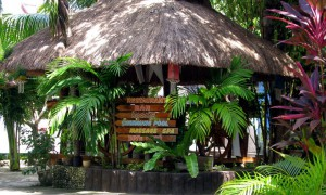 Love's Beach & Dive Resort - Moalboal Cebu Philippines