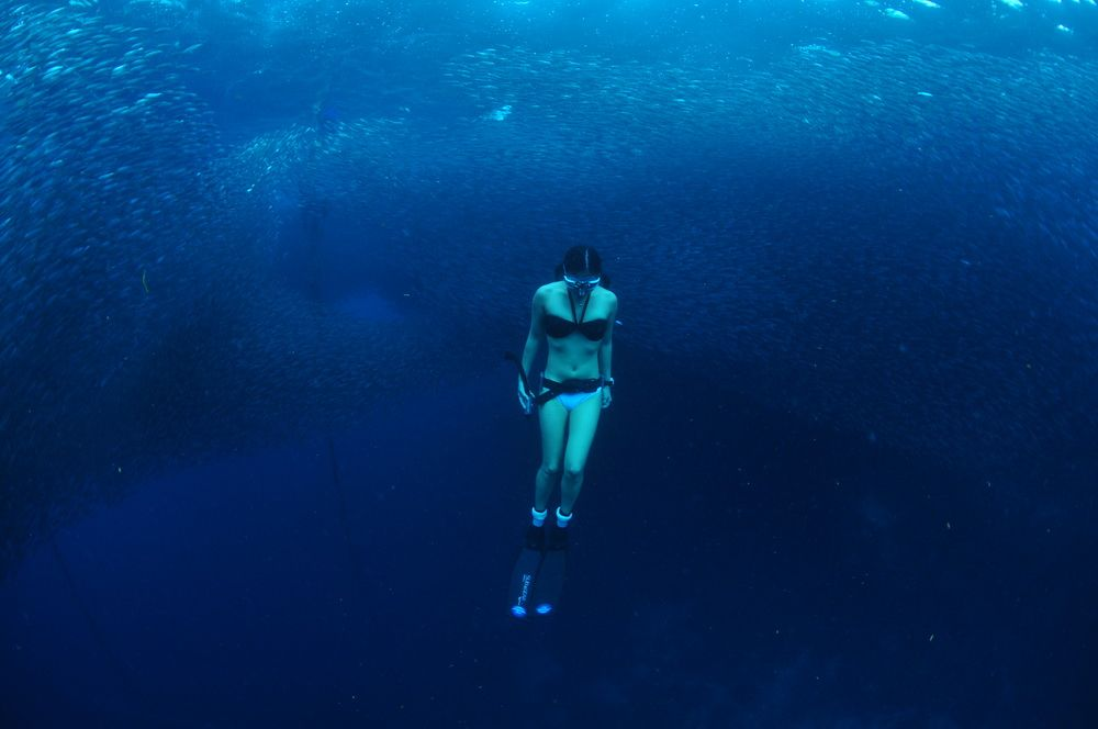 Freediving Girl in Moalboal, Cebu